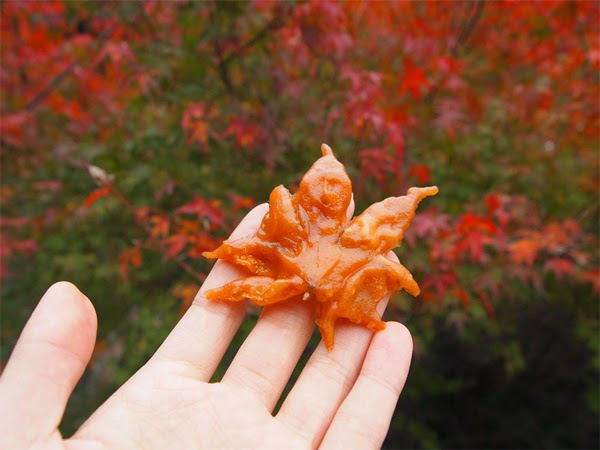 Mùa thu, mùa Hibiscus, mùa yêu
