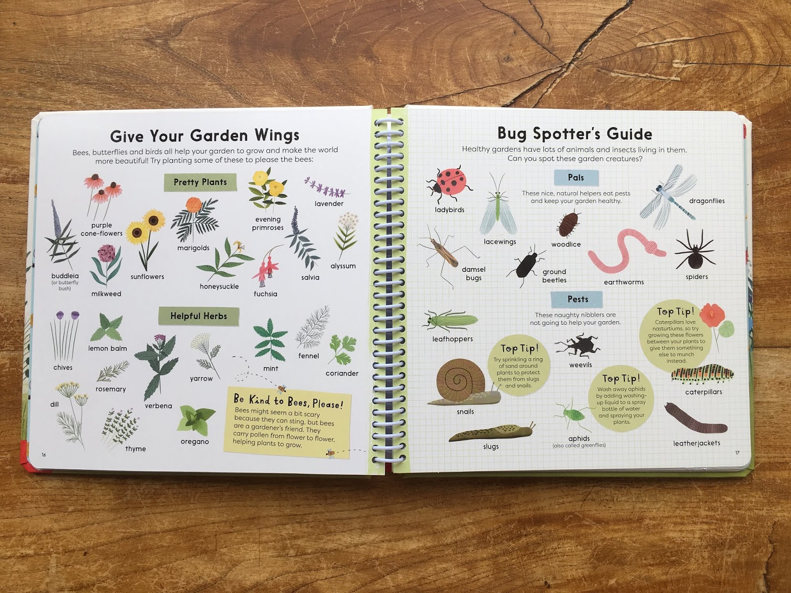 Touring Picture Book Sunflower Shoots And Muddy Boots Flower