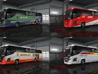 Skinpack Scania Touring HD