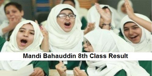 Mandi Bahauddin 8th Class Result 2019 PEC - BISE MBDin Board Results