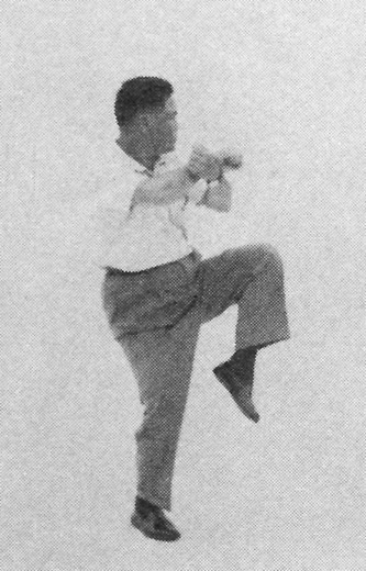 Tai Chi Chuan (Square Form) 56. Raise The Left Leg And Kick Out In A Curve