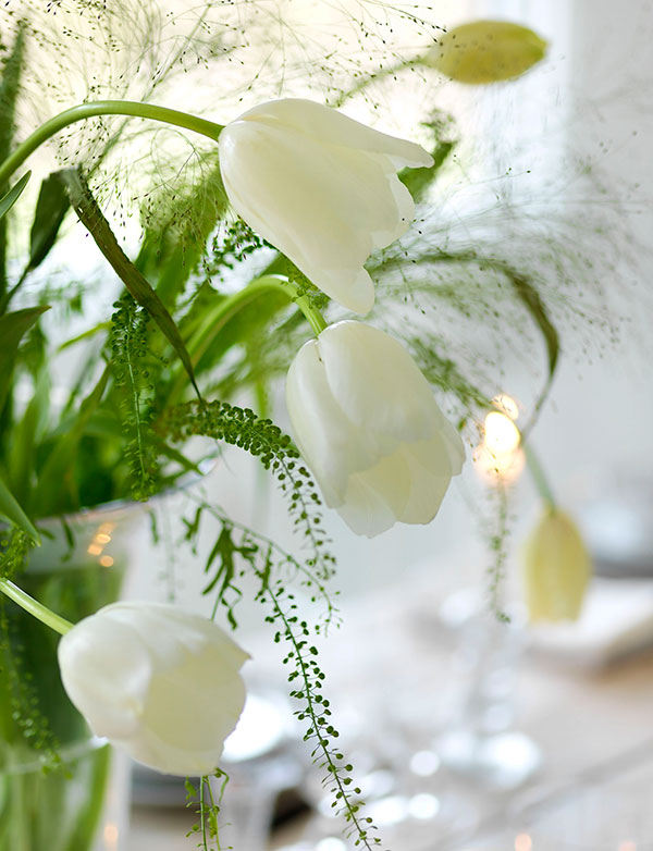 Spring inspiration and decorating ideas! Gorgeous white spring tulips in vase look stunning with vibrant green.