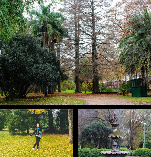 Jardin Botanico de Montevideo