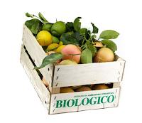 Logo Vinci gratis una fornitura di 20 kg di limoni e arance della Sicilia