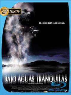 Bajo Aguas Tranquilas (2005) HD [1080p] Latino [GoogleDrive] SilvestreHD