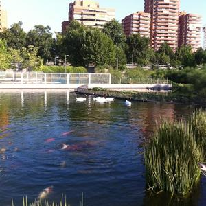 Donde está el Parque Intercomunal de la Reina de Santiago de Chile 5