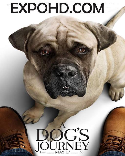 A Dog's Journey 2019 IMDb 720p | 1080p | HDRip x265 ACC 1.1Gb