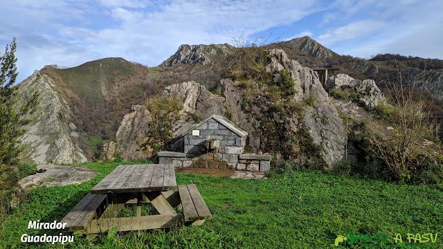 Mirador de Cuadapipu, Vis