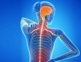 kelainan dan penyakit pada sistem koordinasi, kelainan dan gangguan pada sistem koordinasi manusia,  kelainan penyakit pada sistem saraf