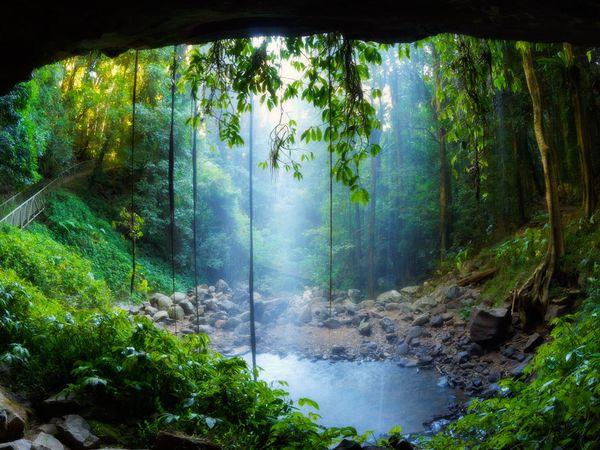 Numa Falls Canada Wallpaper Dramaturgy Research Files Rainforest Escape