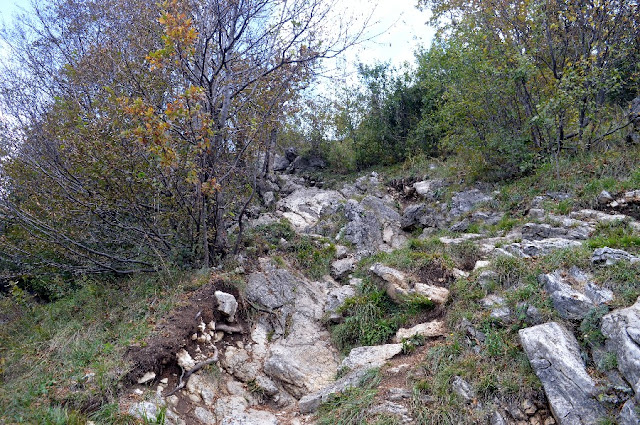escursione monte barro lecco