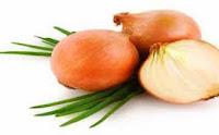 obat herbal osteoporosis dari daun salam dan bawang bombay