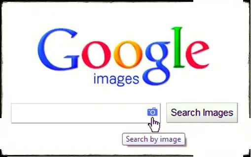 البحث بالصور | أفضل 10 المواقع لصور المجانية و بدون حقوق الملكية