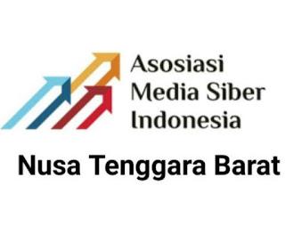 Logo AMSI NTB