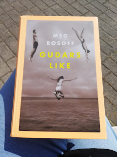 """Omslagsbild av """"Gudars like"""" av Meg Rosoff"""""""