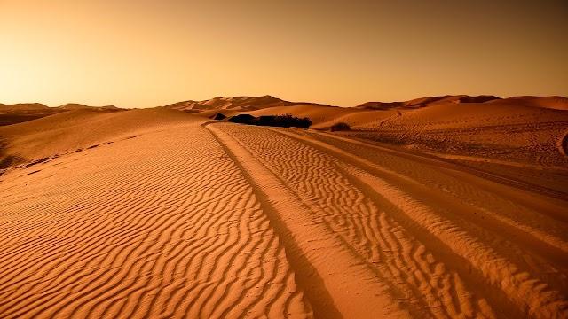 सहारा डेसर्ट की जानकारी हिन्दी । sahara desert information hindi