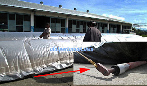 pengeringan padi solar dryer