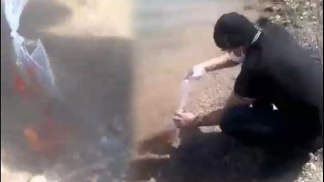 Konya'da Göle Balık Bırakan Amerikalı Kim?