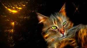 era-gato-mundo-felino