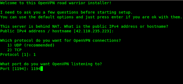 vpn server for kali linux