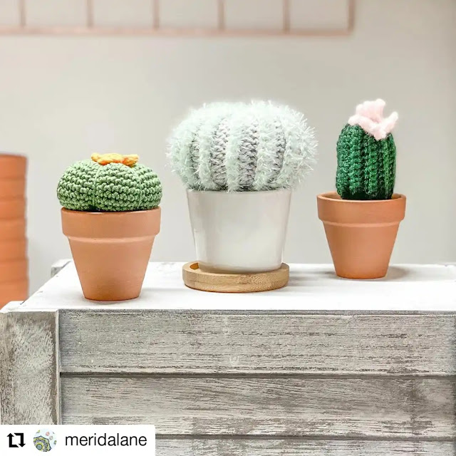 Plantas que no mueren - Cactus y Helechos a Crochet