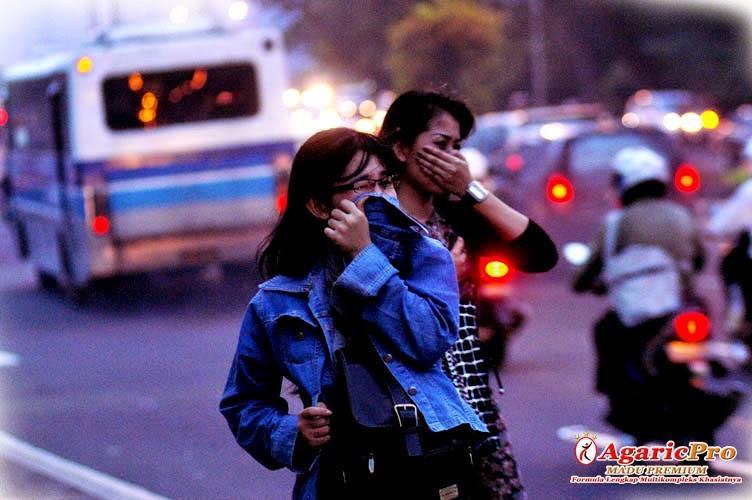 polusi penyebab asma