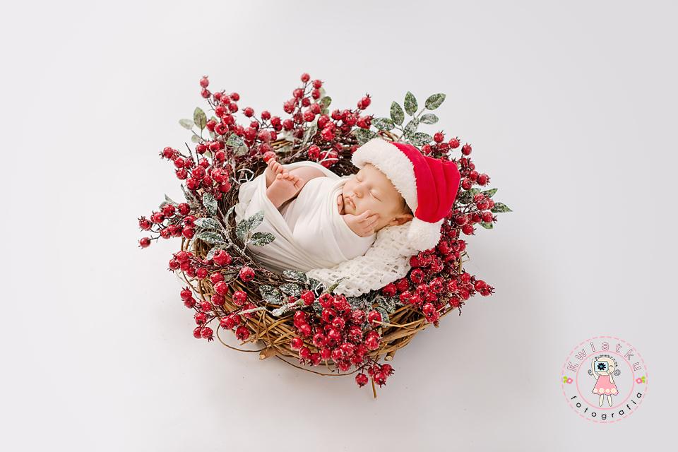 Sesja noworodkowa i ciążowa Pruszcz, Rotmanka, Straszyn, Gdańsk
