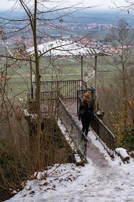 Blättersbergweg Rhodt  Winterwandern Südliche Weinstraße  Rietburg - Villa Ludwigshöhe - Edenkoben 07