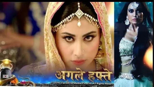 High Voltage Drama : Mihir Tamsi's marriage twist Shravani's naagin syappa in Naagin 3