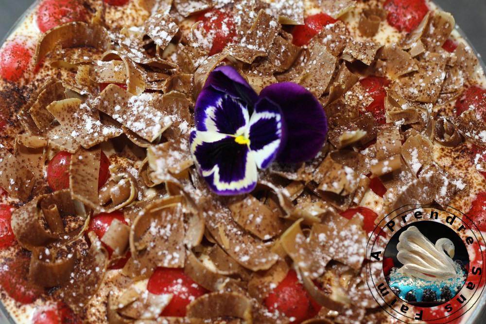 Tiramisu au chocolat et aux cerises