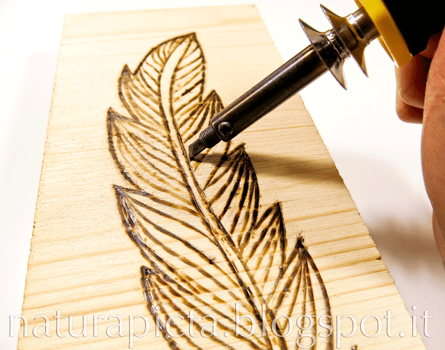 Natura Picta Diy Wood Burned Pyrography Boho Feather