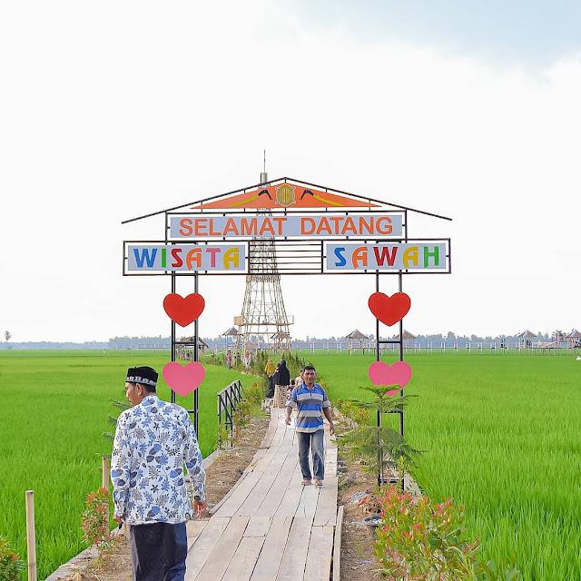 Lokasi Wisata Sawah Mane Kareung