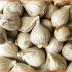 Manfaat dan Khasiat Bawang Putih Tunggal untuk Kesehatan