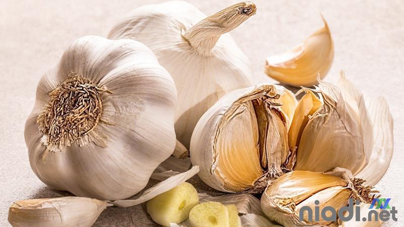 obat darah tinggi tradisional bawang putih