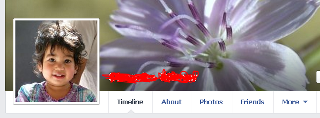 View Locked Profile Picture on Facebook-Enlarged View