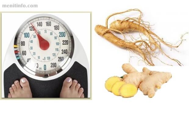 bahan rempah alami penurun berat badan