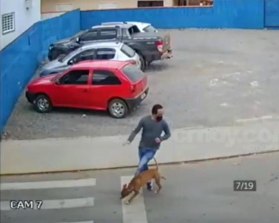 hombre atropellado por perro
