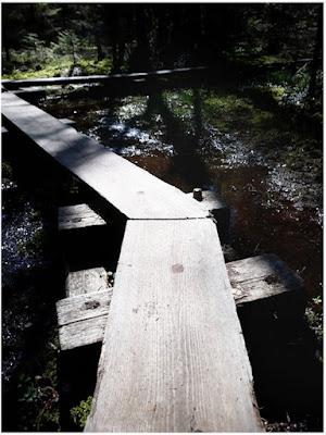 Liukas lankku pitkospolun mutkassa, jolta kirjoittaja putosi suomaastoon.