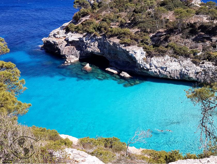 Top 5 atrakcji Majorki
