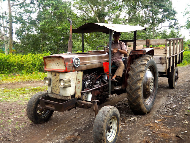 Tractor at Glenmore plantation, Kalibaru, East Java, Indonesia