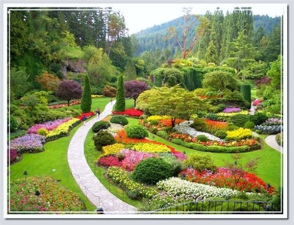 mon jardin fleuri de beaux jardins en chine. Black Bedroom Furniture Sets. Home Design Ideas