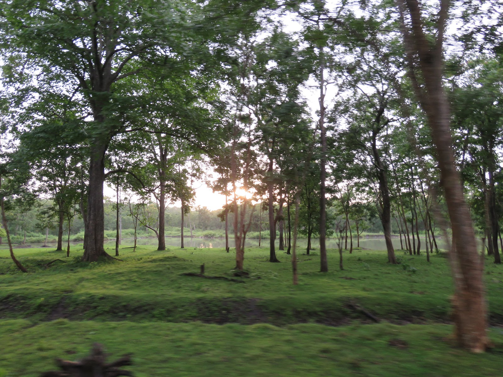 Karthik's Wander: Nature and wilderness - Kabini and all
