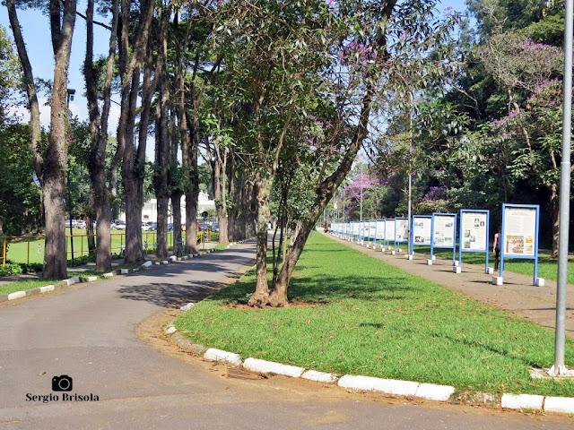 Vista ampla do Museu de Rua do Instituto Butantan - Butantã