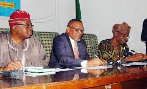South Africa pledges more support for Nigeria