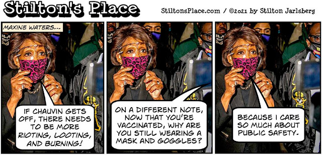 stilton's place, stilton, political, humor, conservative, cartoons, jokes, hope n' change, maxine waters, blm, chauvin, floyd, riots, race, mask