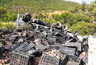 Caminhão carregado cai em ribanceira