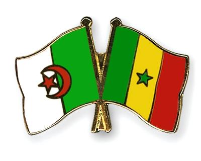 بطولة امم افريقيا 2019