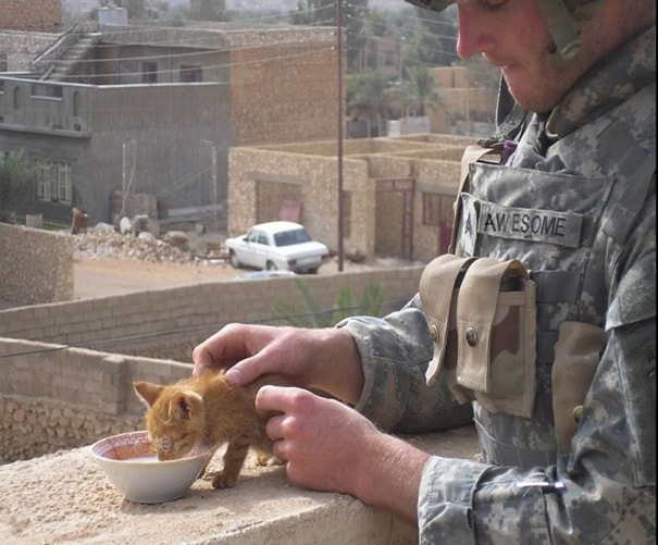 4. Private Awesome Is Feeding A Kitten