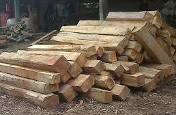 kayu jati sulawesi kemplengan