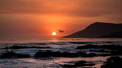 Wallpaper Sunset, Birds, Sea, Horizon, Rocks, Beach